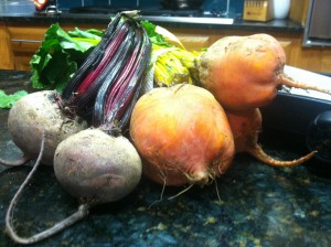 Close up of the red and golden beets