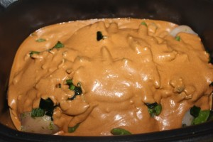 Topping everything with the yummy coconut milk, almond butter and red curry paste sauce in the crock pot