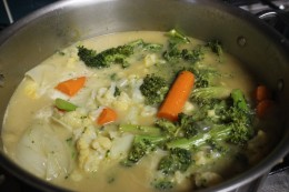 Before you blend, add the 1 can of coconut milk to the cooked vegetables for my Paleo Broccoli Vegetable Soup