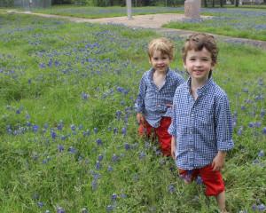 My Cute Texan Boys in their Annual Bluebonnet picture