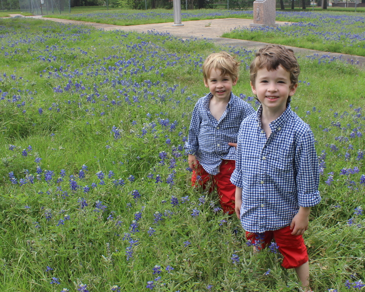 My Cute Texan Boys in their Annual Bluebonnet picture