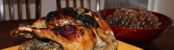 One last picture of my Cuban Inspired Turkey with a Garlic Mojo Marinade Rub
