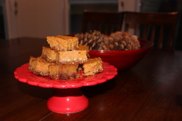 Last picture I promise. Paleo Pumpkin Pie Bars are ready to be devoured