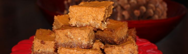 Up close and beautiful these Paleo Pumpkin Pie Bars