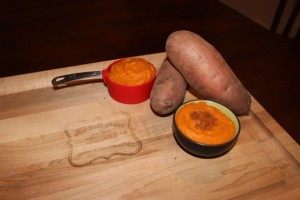 One final picture of the 21DSD Sweet Potato Puree close up. It was too good to share